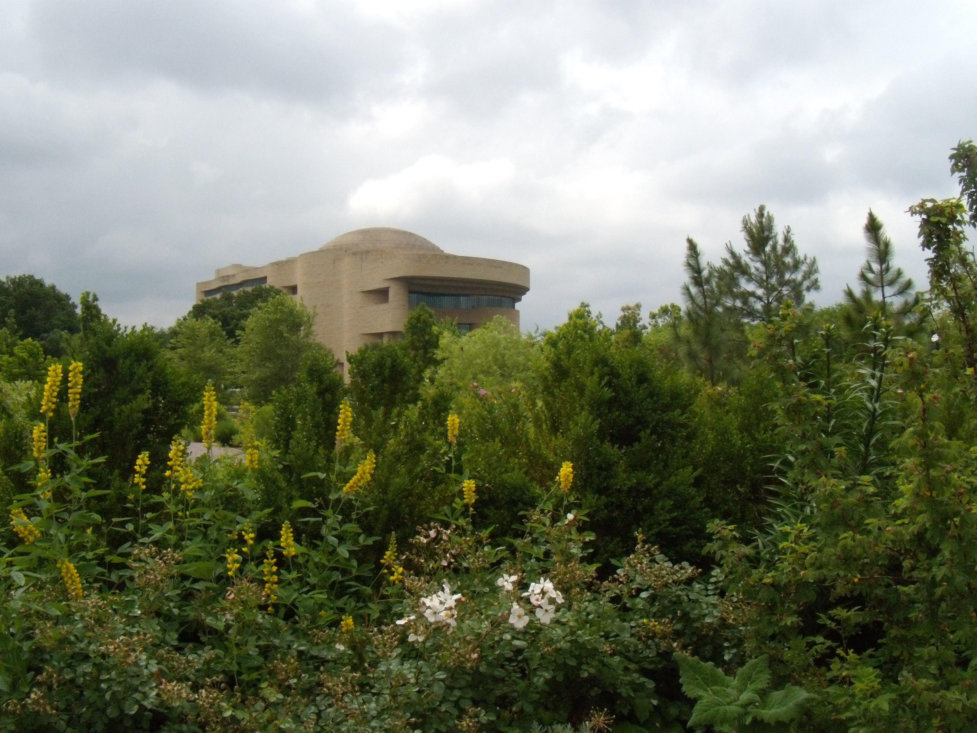 View from the U.S. Botanic Garden
