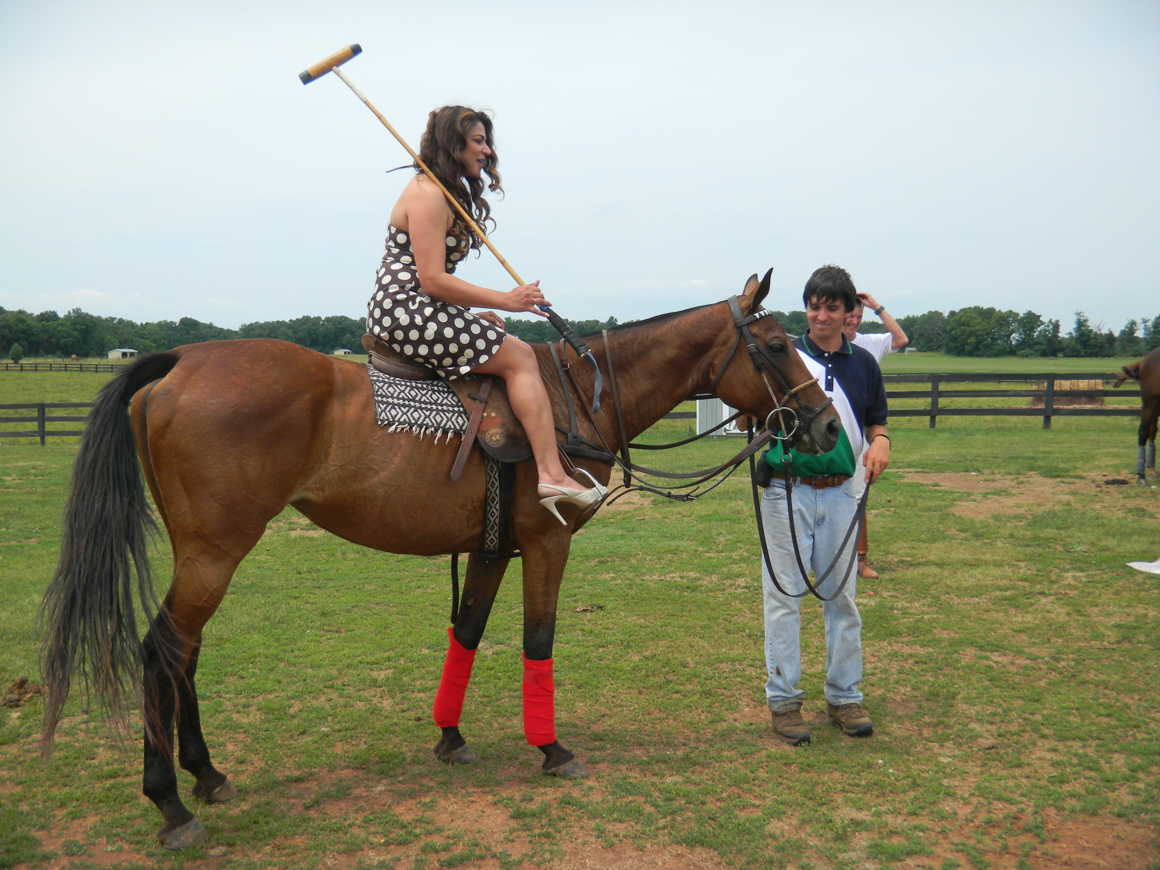 how to ride an ex polo pony