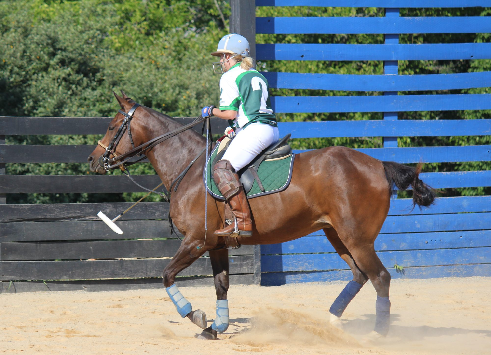 Chukker by Chukker